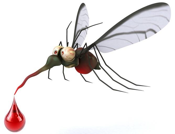 комари 2